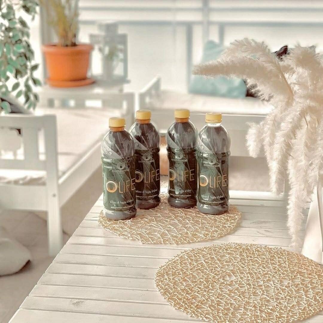foglie olivo antivirale